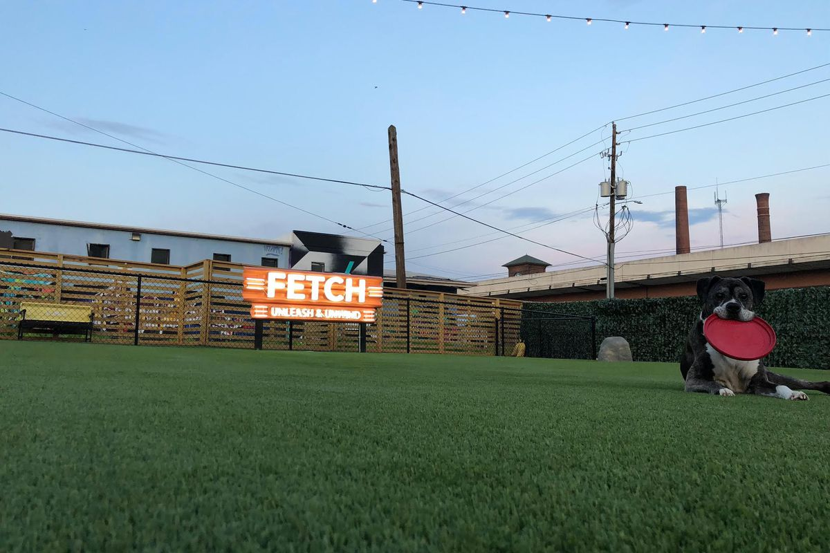 Fetch Atlanta 1