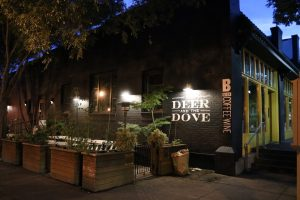 The Deer and The Dove